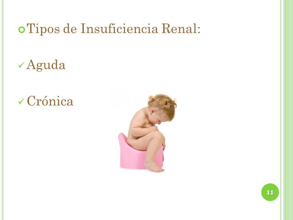 Tipos de Insuficiencia Renal: Aguda Crónica 11