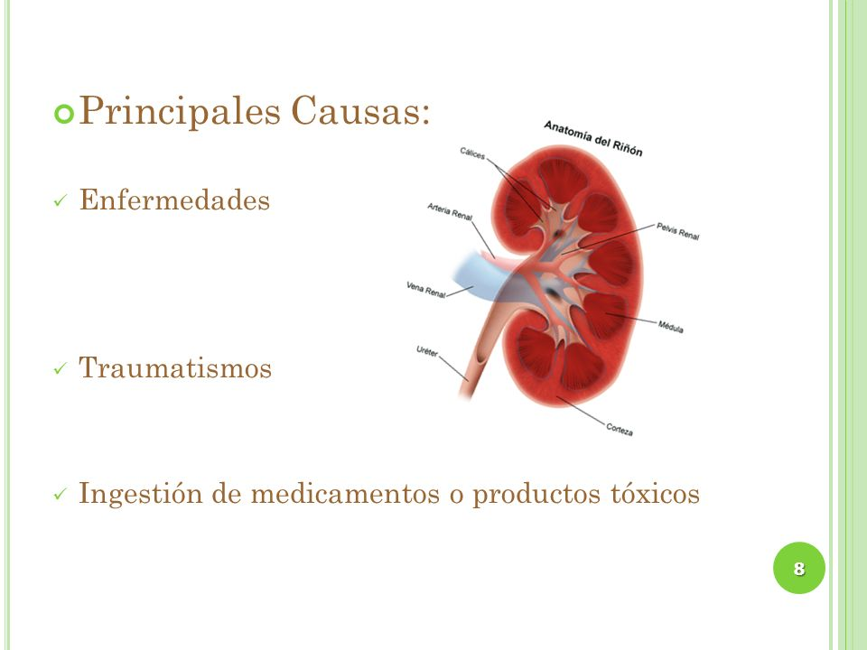 Principales Causas: Enfermedades Traumatismos Ingestión de medicamentos o productos tóxicos 8
