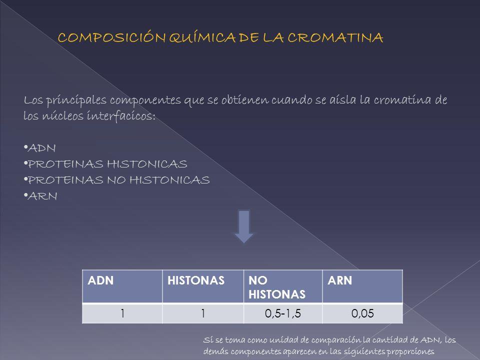 COMPOSICIÓN QUÍMICA DE LA CROMATINA Los principales componentes que se obtienen cuando se aísla la cromatina de los núcleos interfacicos: ADN PROTEINA