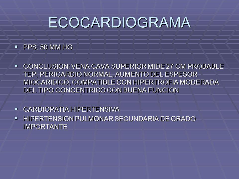 ECOCARDIOGRAMA PPS: 50 MM HG PPS: 50 MM HG CONCLUSION: VENA CAVA SUPERIOR MIDE 27 CM PROBABLE TEP, PERICARDIO NORMAL, AUMENTO DEL ESPESOR MIOCARIDICO,