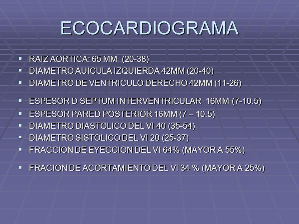 ECOCARDIOGRAMA RAIZ AORTICA: 65 MM (20-38) RAIZ AORTICA: 65 MM (20-38) DIAMETRO AUICULA IZQUIERDA 42MM (20-40) DIAMETRO AUICULA IZQUIERDA 42MM (20-40)