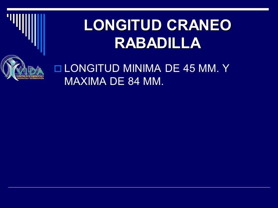 LONGITUD CRANEO RABADILLA LONGITUD MINIMA DE 45 MM. Y MAXIMA DE 84 MM.