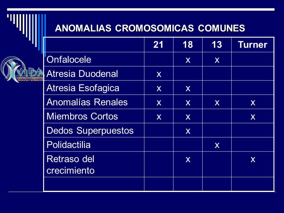 211813Turner Onfalocelexx Atresia Duodenalx Atresia Esofagicaxx Anomalías Renalesxxxx Miembros Cortosxxx Dedos Superpuestosx Polidactiliax Retraso del