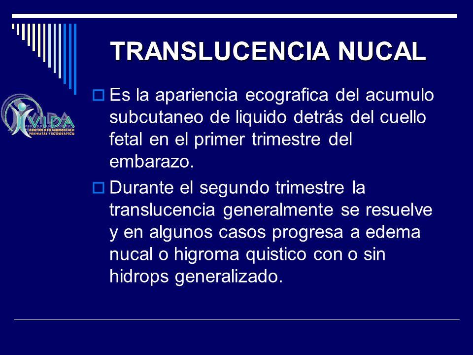 TRANSLUCENCIA NUCAL Es la apariencia ecografica del acumulo subcutaneo de liquido detrás del cuello fetal en el primer trimestre del embarazo. Durante