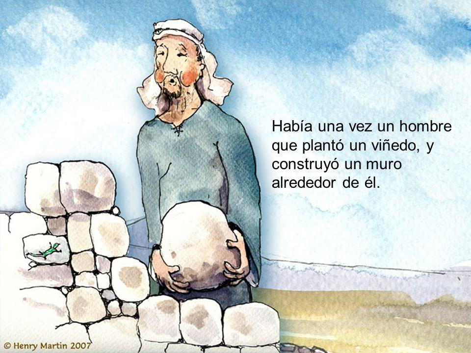Había una vez un hombre que plantó un viñedo, y construyó un muro alrededor de él.