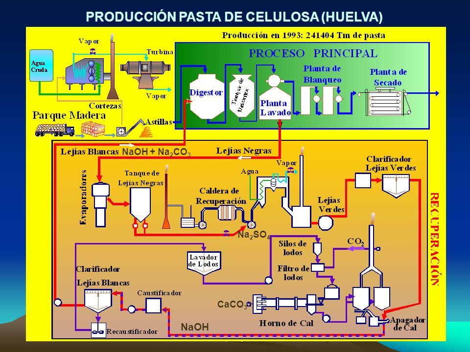 Radiación Natural y Medio Ambiente Suances, 4-8 julio 200529 PRODUCCIÓN PASTA DE CELULOSA (HUELVA) NaOH + Na 2 CO 3 Na 2 SO 4 CaCO 3 NaOH