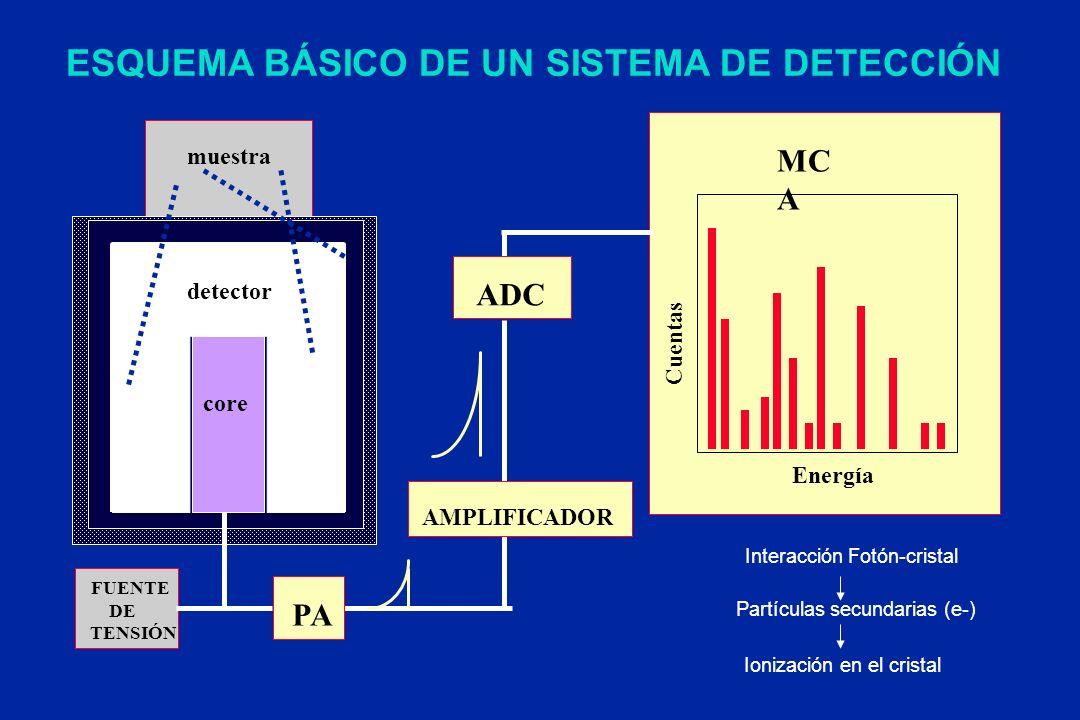 MC A AMPLIFICADOR ESQUEMA BÁSICO DE UN SISTEMA DE DETECCIÓN muestra PA FUENTE DE TENSIÓN ADC Energía Cuentas detector core Interacción Fotón-cristal P