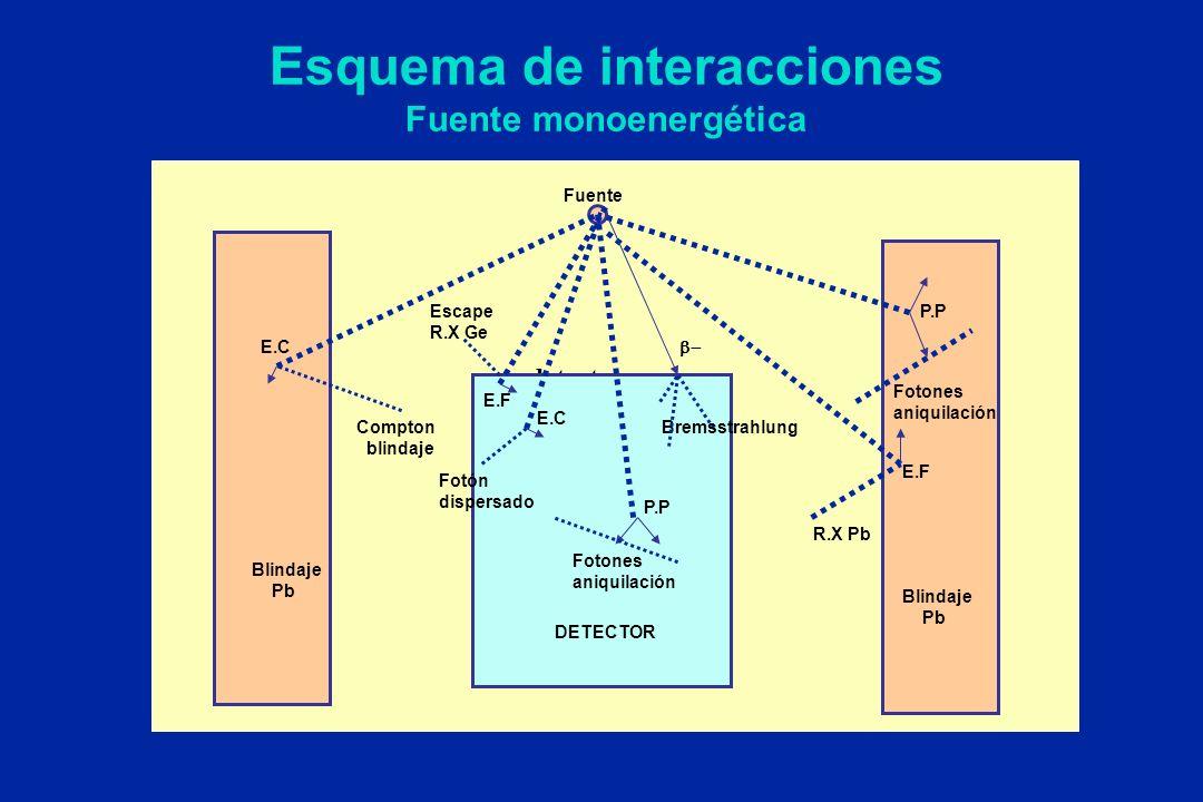 Esquema de interacciones Fuente monoenergética detector Escape R.X Ge R.X Pb Fuente Fotones aniquilación Fotón dispersado Blindaje Pb Blindaje Pb DETE
