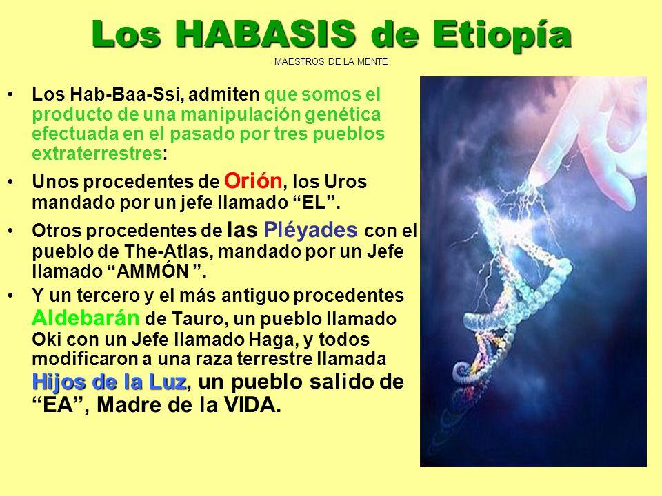 7 Los HABASIS de Etiopía MAESTROS DE LA MENTE Los Hab-Baa-Ssi, admiten que somos el producto de una manipulación genética efectuada en el pasado por t