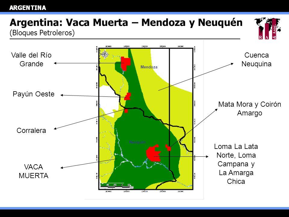 Argentina: Vaca Muerta – Mendoza y Neuquén (Bloques Petroleros) Loma La Lata Norte, Loma Campana y La Amarga Chica Mata Mora y Coirón Amargo Cuenca Ne