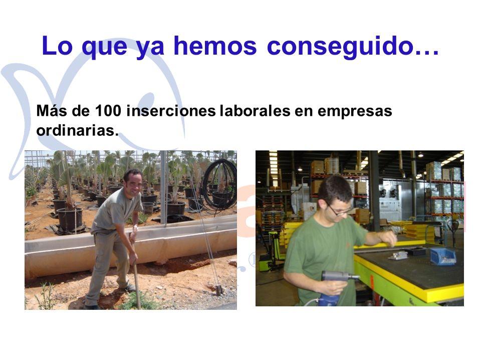 Lo que ya hemos conseguido… Más de 100 inserciones laborales en empresas ordinarias.