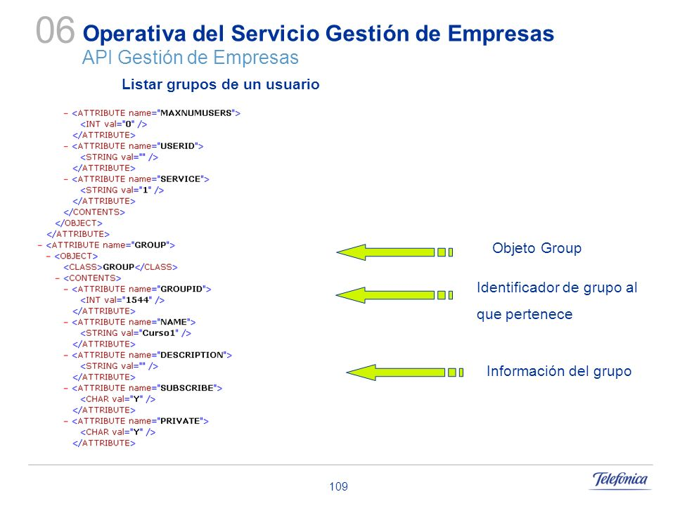 109 Operativa del Servicio Gestión de Empresas API Gestión de Empresas 06 Objeto Group Identificador de grupo al que pertenece Información del grupo L