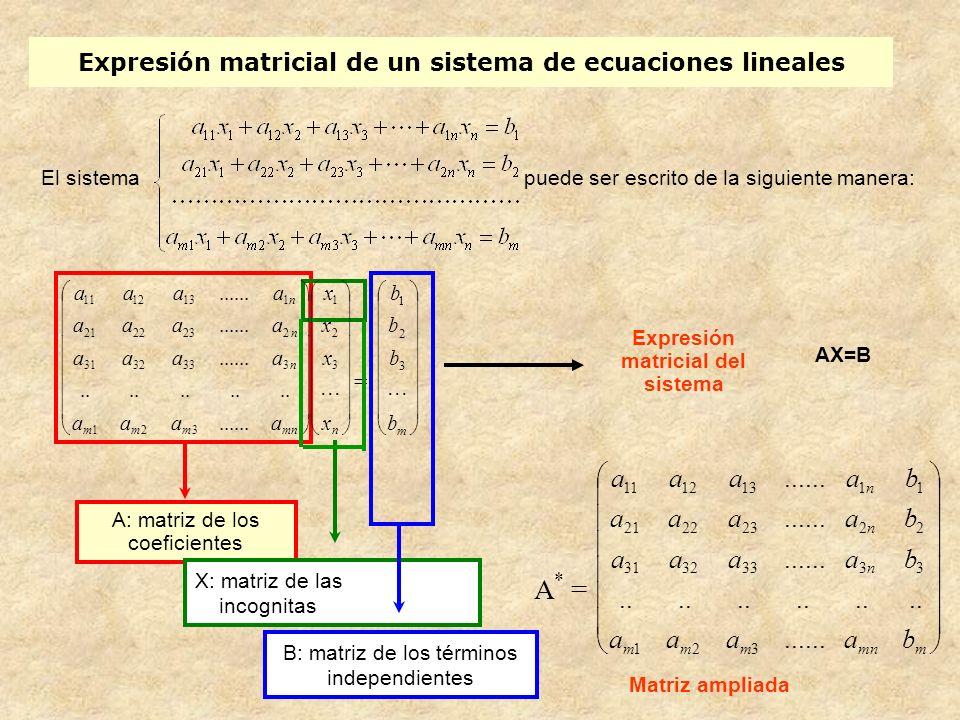 Expresión matricial: ejemplo El sistema 2x + 5y– 3z = 1 x– 4y + z =–2 Tiene la siguiente matriz de los coeficientes: A = 2 5 –3 1 –4 1 Tiene la siguiente matriz ampliada: A * = 2 5 –3 1 1 –4 1 –2 Tiene la siguiente expresión matricial: 2 5 –3 1 –4 1 x y z = 1 – 2