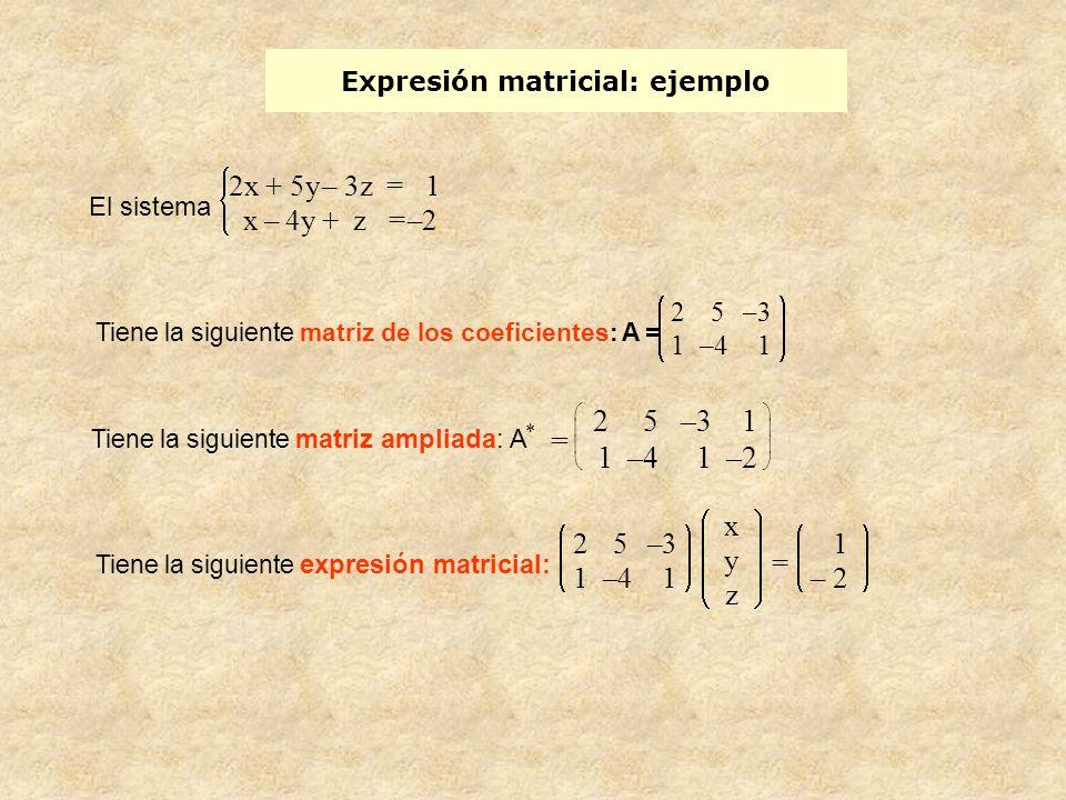 Expresión matricial: ejemplo El sistema 2x + 5y– 3z = 1 x– 4y + z =–2 Tiene la siguiente matriz de los coeficientes: A = 2 5 –3 1 –4 1 Tiene la siguie