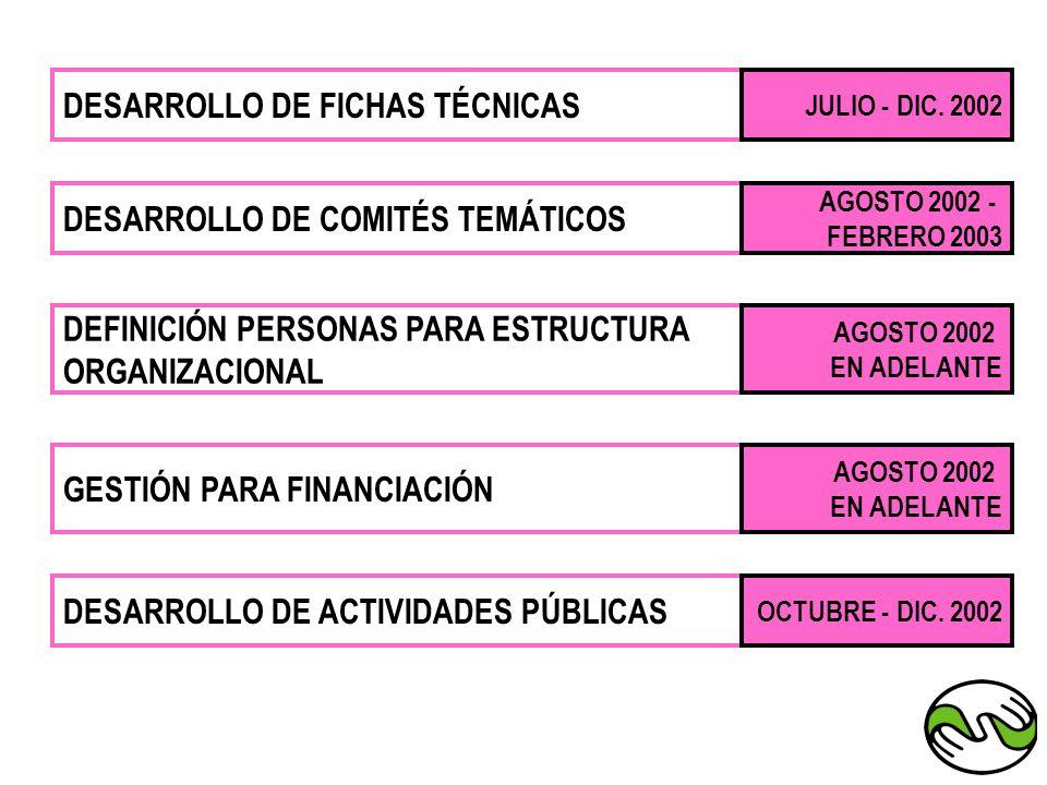 DESARROLLO DE FICHAS TÉCNICAS JULIO - DIC. 2002 DESARROLLO DE COMITÉS TEMÁTICOS AGOSTO 2002 - FEBRERO 2003 DEFINICIÓN PERSONAS PARA ESTRUCTURA ORGANIZ