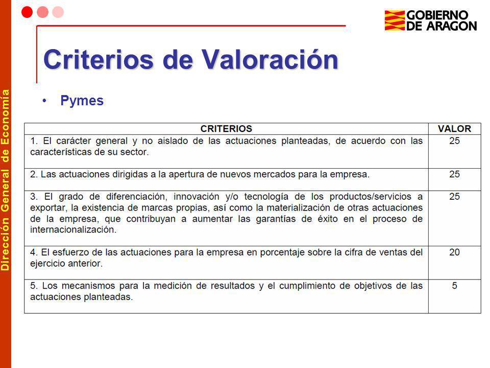 Dirección General de Economía Criterios de Valoración Pymes