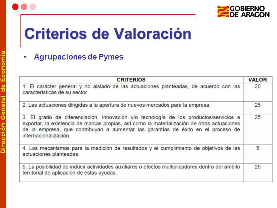 Dirección General de Economía Criterios de Valoración Agrupaciones de Pymes