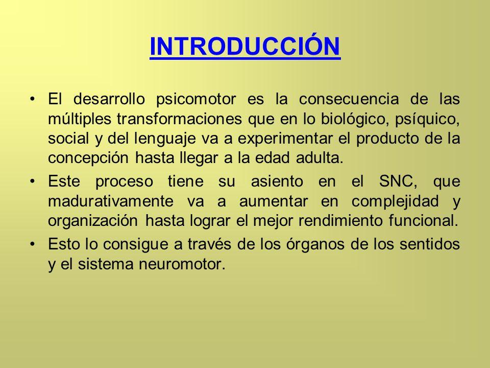 INTRODUCCIÓN El desarrollo psicomotor es la consecuencia de las múltiples transformaciones que en lo biológico, psíquico, social y del lenguaje va a e