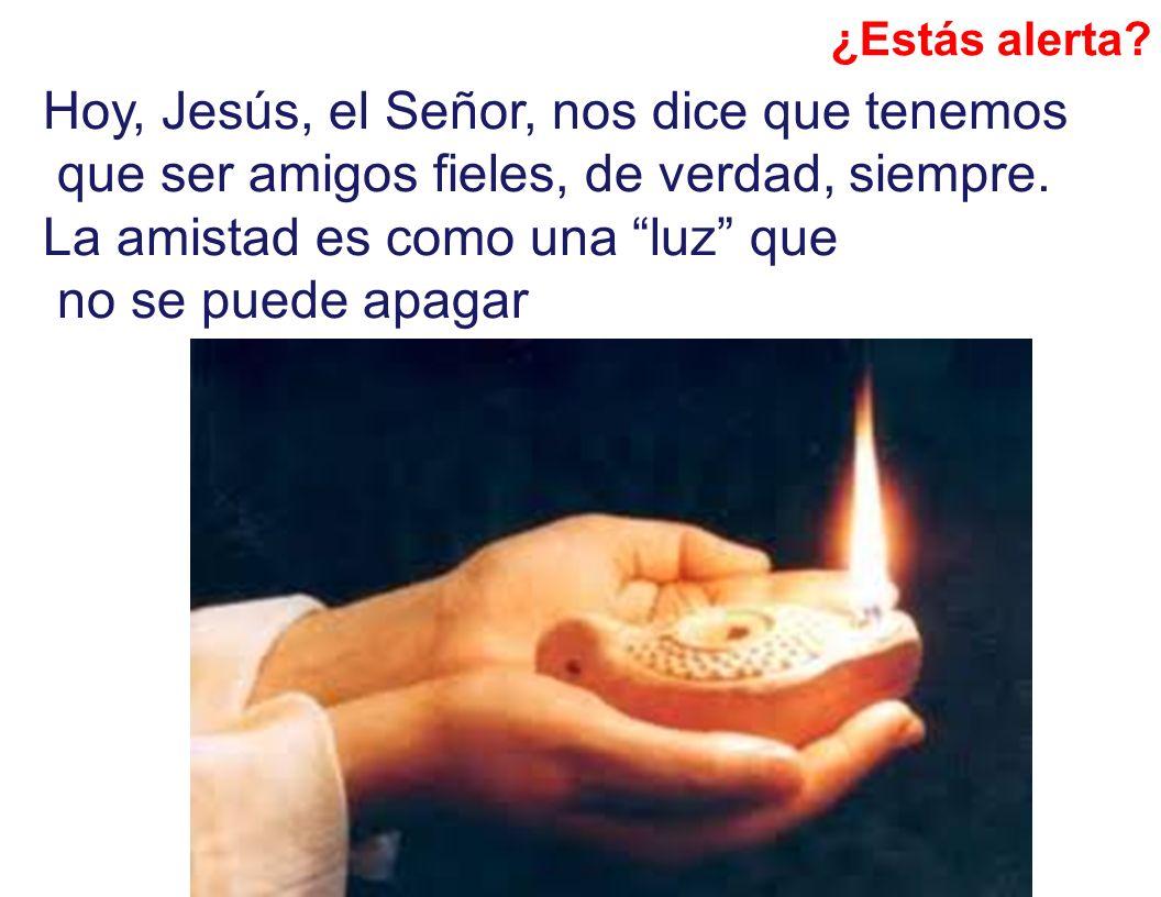 Hoy, Jesús, el Señor, nos dice que tenemos que ser amigos fieles, de verdad, siempre. La amistad es como una luz que no se puede apagar ¿Estás alerta?