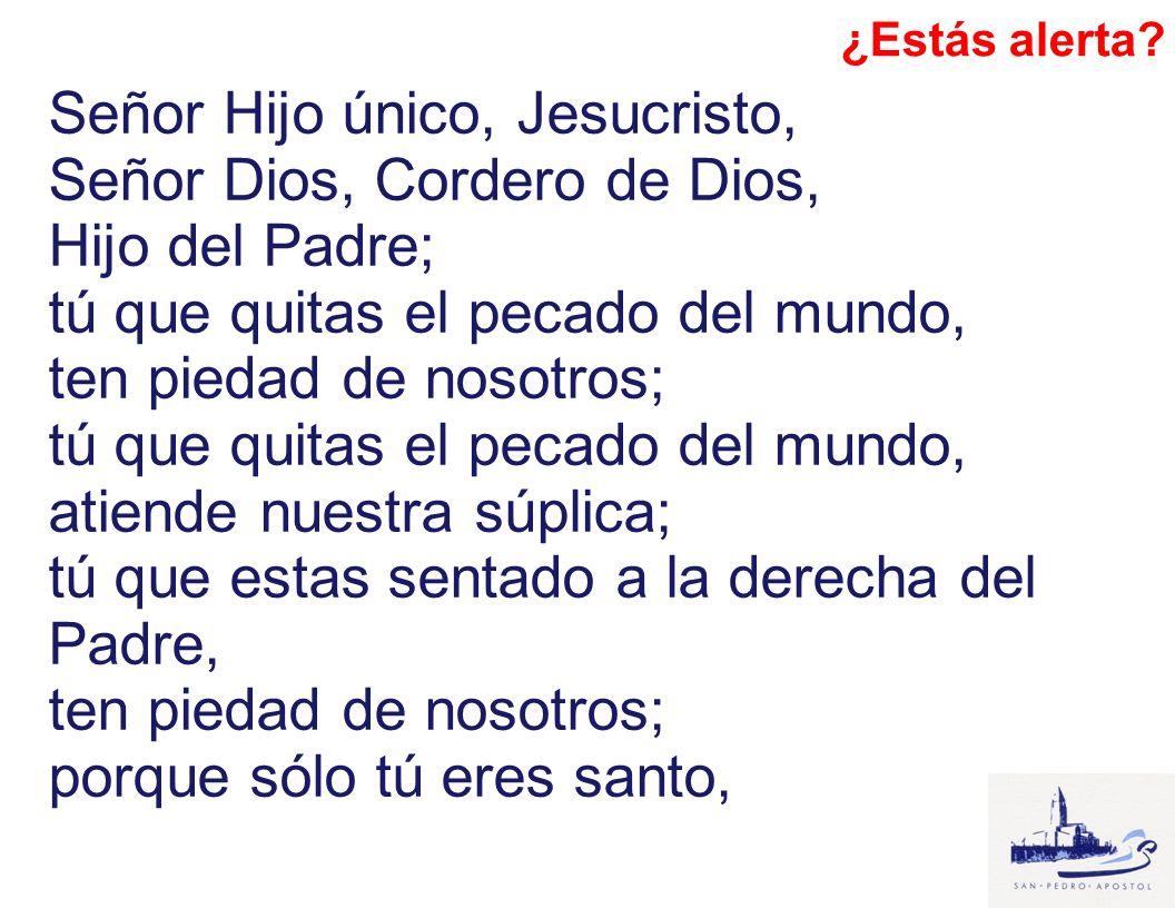 Señor Hijo único, Jesucristo, Señor Dios, Cordero de Dios, Hijo del Padre; tú que quitas el pecado del mundo, ten piedad de nosotros; tú que quitas el