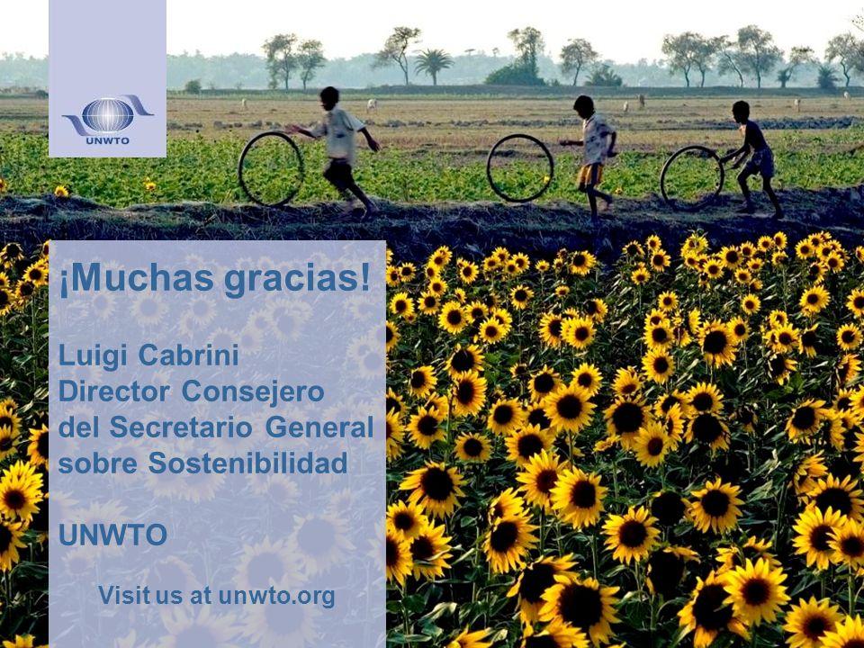 ¡Muchas gracias! Luigi Cabrini Director Consejero del Secretario General sobre Sostenibilidad UNWTO Visit us at unwto.org