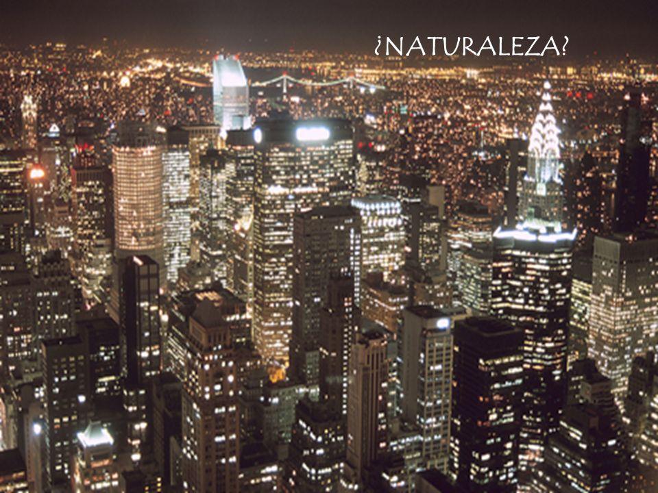 ¿La naturaleza nos rodea?