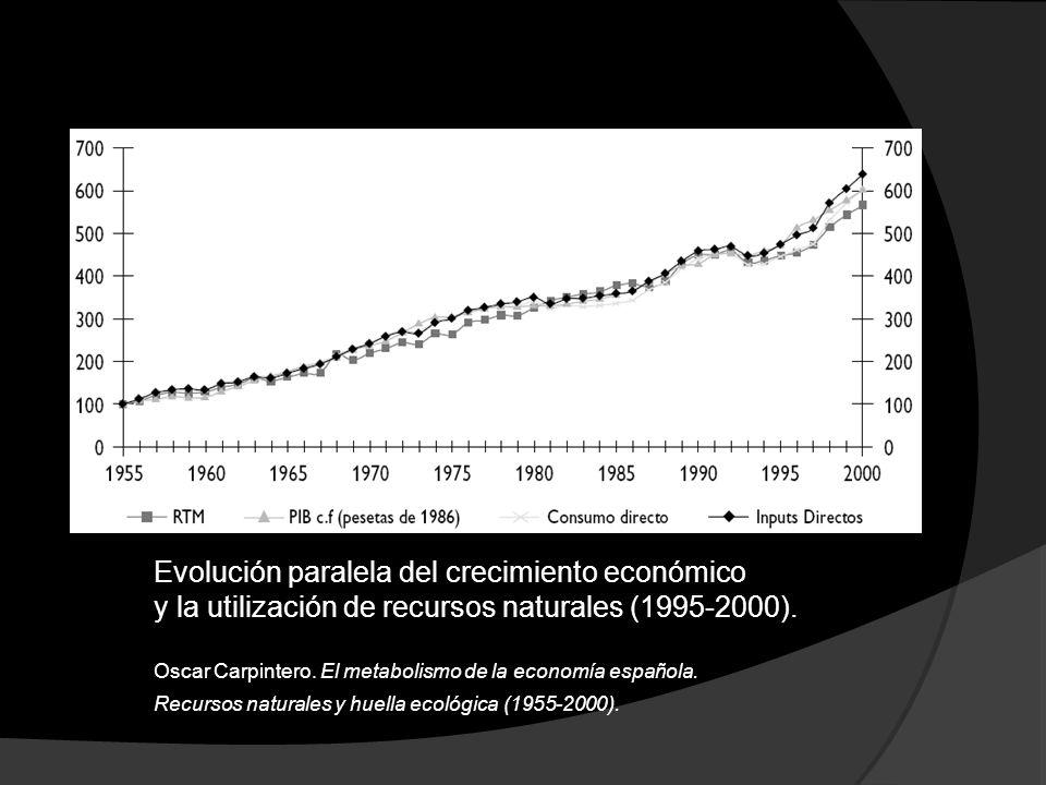 Evolución paralela del crecimiento económico y la utilización de recursos naturales (1995-2000). Oscar Carpintero. El metabolismo de la economía españ