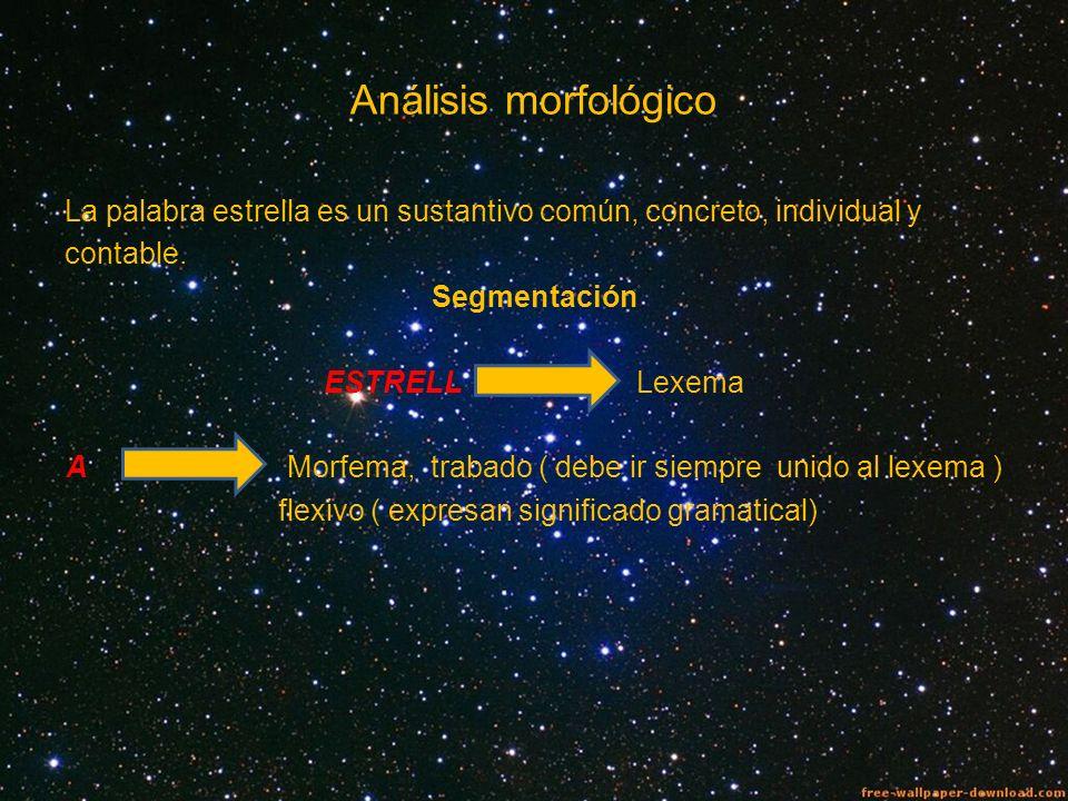 Análisis morfológico La palabra estrella es un sustantivo común, concreto, individual y contable. Segmentación ESTRELL Lexema A Morfema, trabado ( deb