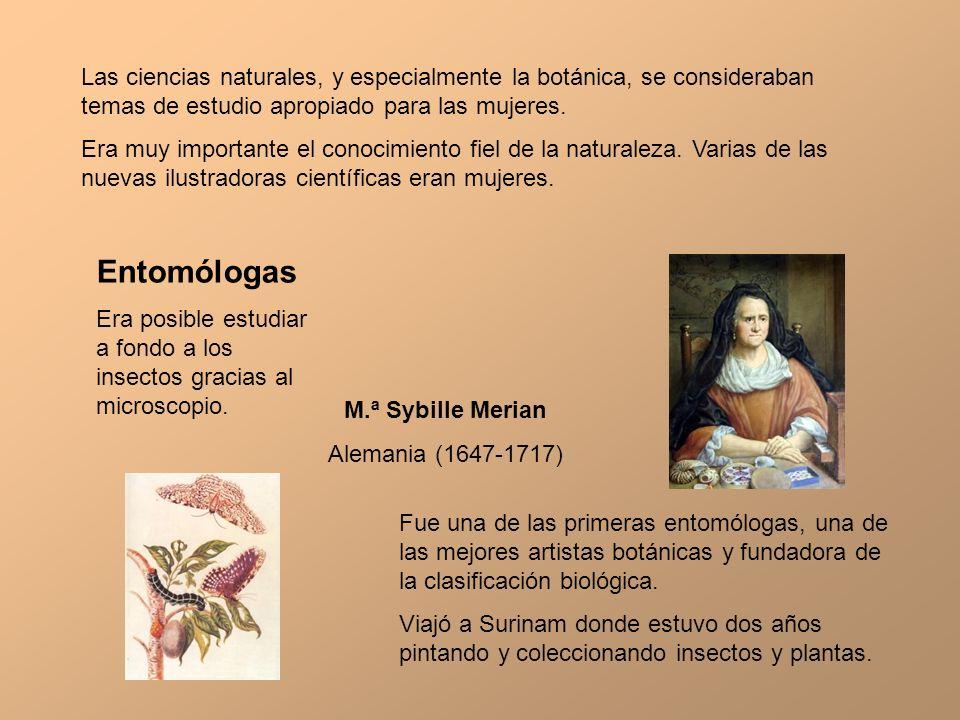 Las ciencias naturales, y especialmente la botánica, se consideraban temas de estudio apropiado para las mujeres. Era muy importante el conocimiento f
