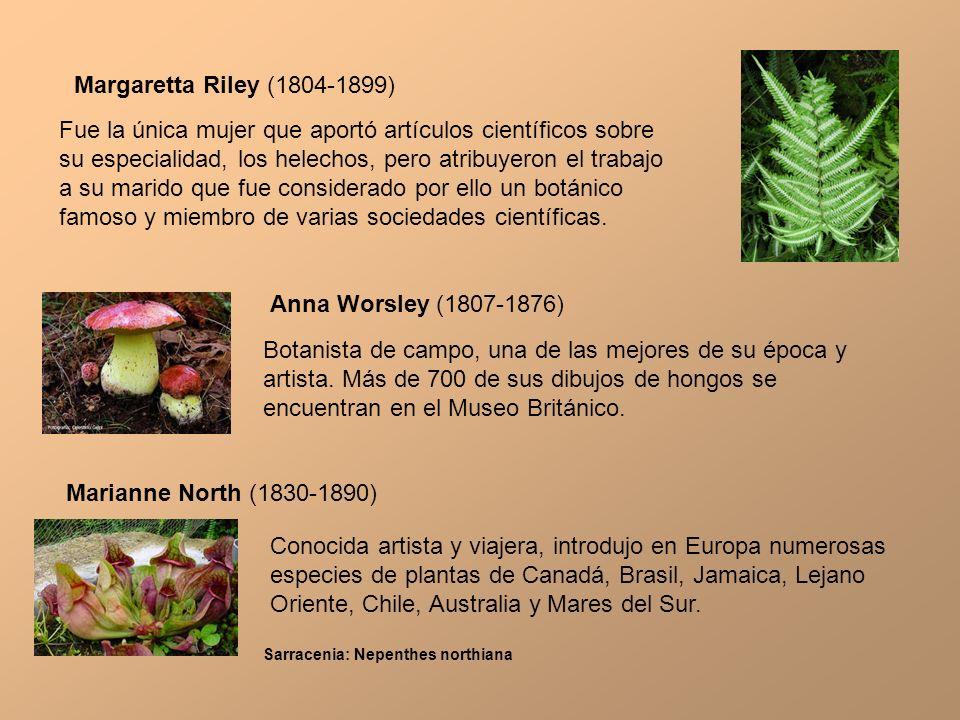 Margaretta Riley (1804-1899) Fue la única mujer que aportó artículos científicos sobre su especialidad, los helechos, pero atribuyeron el trabajo a su