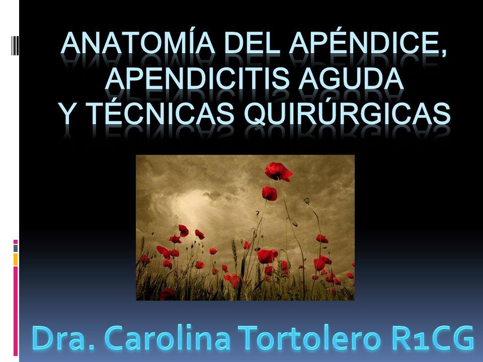 Etiología: Apendicitis catarral Apendicitis obstructiva Inflamación mucosa, submucosa Fecalito Cuerpos extraños Estrangulación Parásitos Cálculo biliar Restos alimento Maingot.