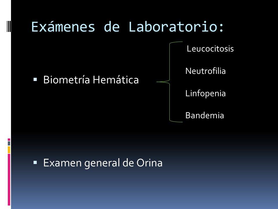 Exámenes de Laboratorio: Biometría Hemática Examen general de Orina Leucocitosis Neutrofilia Linfopenia Bandemia