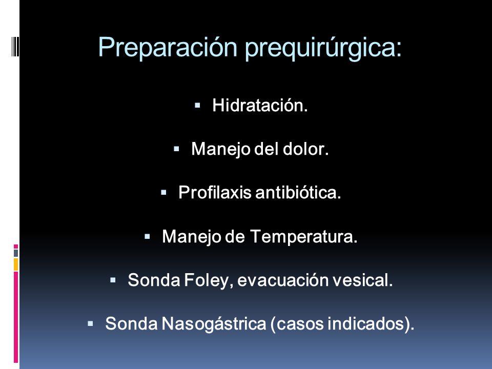 Preparación prequirúrgica: Hidratación. Manejo del dolor. Profilaxis antibiótica. Manejo de Temperatura. Sonda Foley, evacuación vesical. Sonda Nasogá