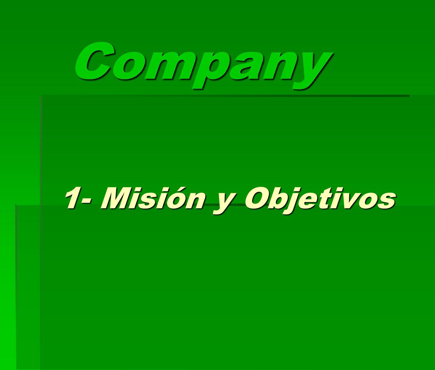 Company 1- Misión y Objetivos
