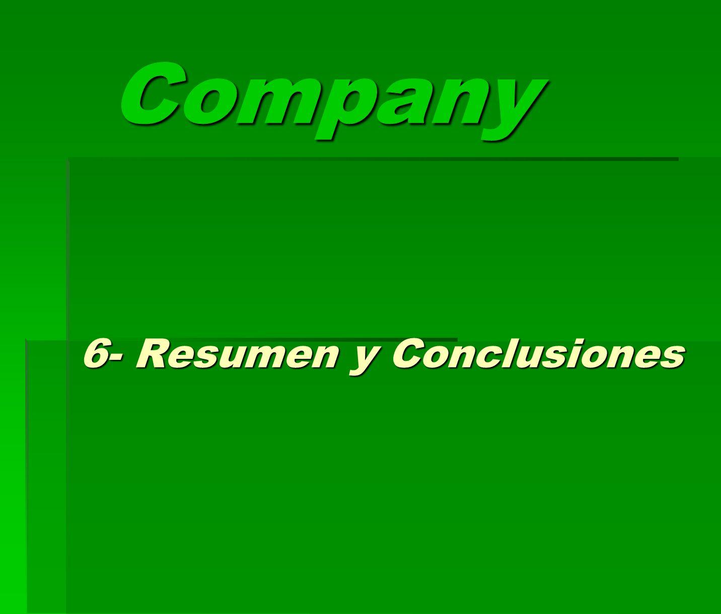 Company 6- Resumen y Conclusiones