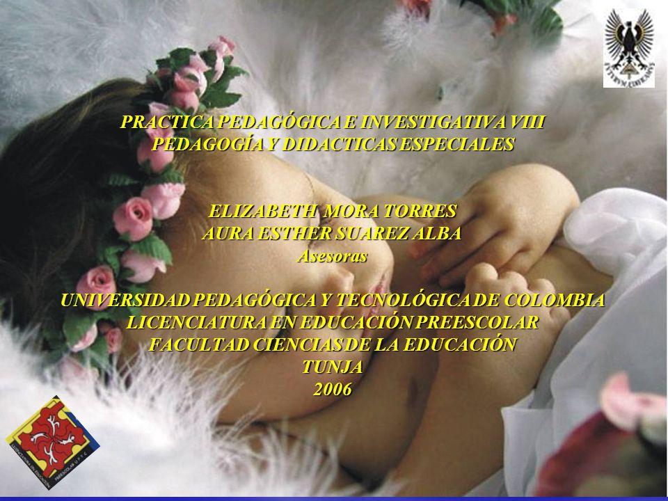PRACTICA PEDAGÓGICA E INVESTIGATIVA VIII PEDAGOGÍA Y DIDACTICAS ESPECIALES ELIZABETH MORA TORRES AURA ESTHER SUAREZ ALBA Asesoras UNIVERSIDAD PEDAGÓGI