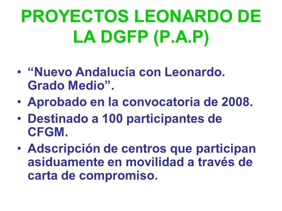 PROYECTOS LEONARDO DE LA DGFP Andalucía con Leonardo I, II y III cursos 2003/04, 2004/05, 2006/07. Duración de las estancias: 12 semanas. Total partic