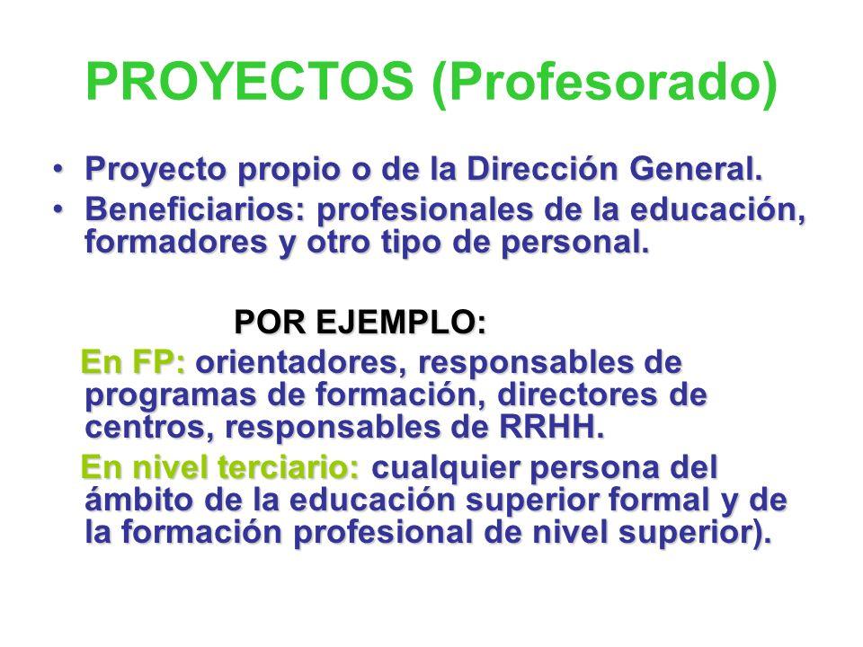 PROYECTO DE CONSORCIO DE LA D.G.F.P.E.P. FCT – ERASMUS I-II Proyectos aprobados en las convocatorias de 2007 y 2008. Para 150 alumnos de ciclos format