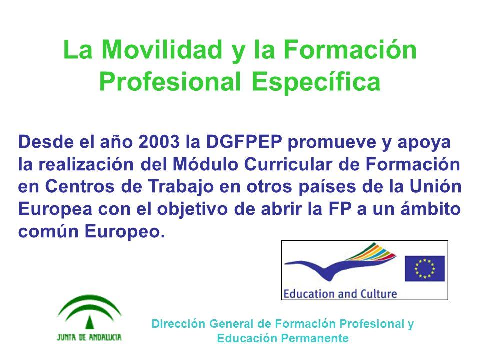 LOS PROGRAMAS EUROPEOS LA F.C.T. EN OTROS PAÍSES MÁLAGA, 31 DE MARZO DE 2009 LA DIMENSIÓN EUROPEA DE LA F.P.