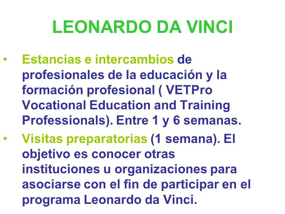 PROYECTOS (Profesorado) Proyecto propio o de la Dirección General. Beneficiarios: profesionales de la educación, formadores y otro tipo de personal. P