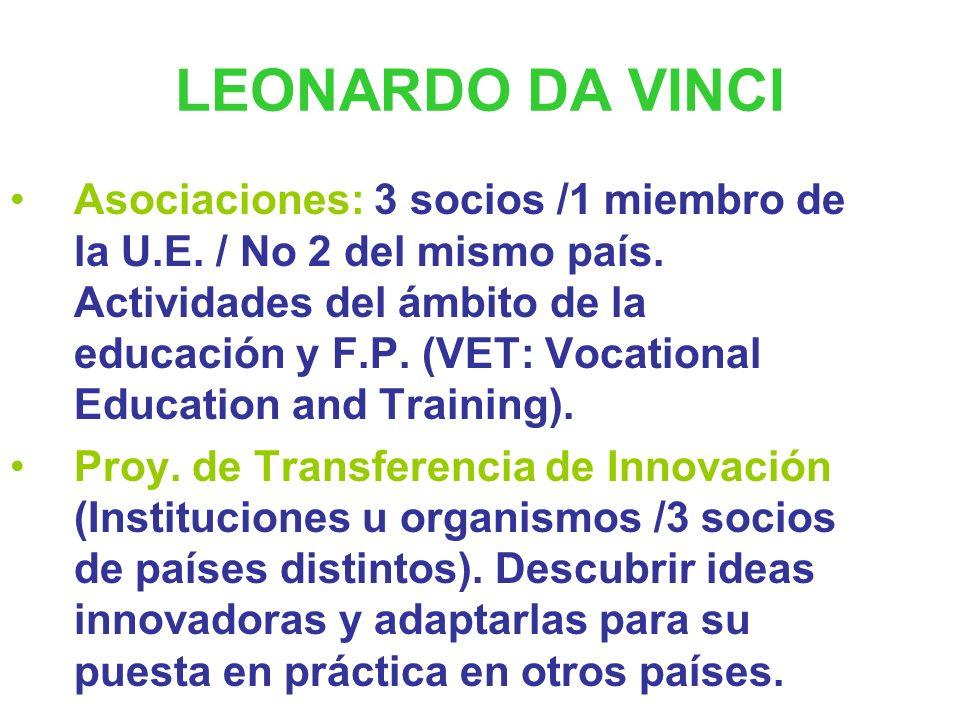 LEONARDO DA VINCI Estancias e intercambios de profesionales de la educación y la formación profesional ( VETPro Vocational Education and Training Prof