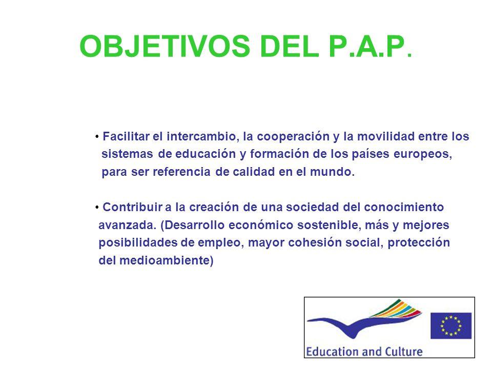 Programa de Aprendizaje Permanente (PAP) -2007-2013 Decisión nº 1720/2006/CE del Parlamento Europeo y del Consejo de 15 de noviembre de 2006 por la qu