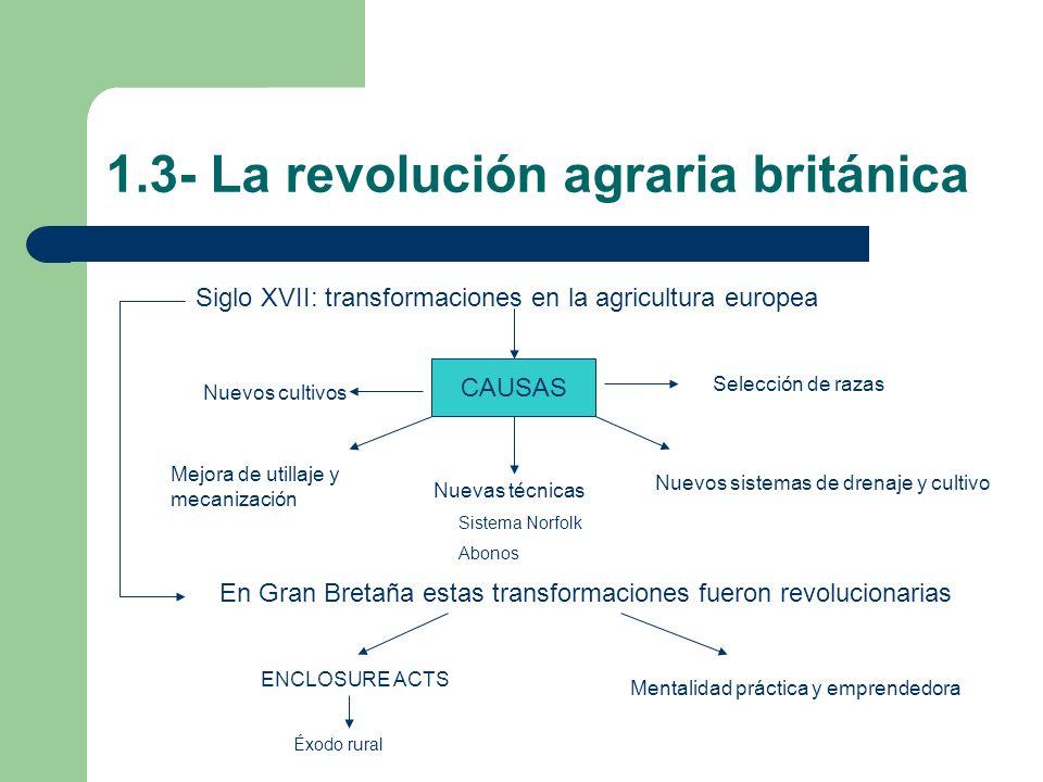 1.3- La revolución agraria británica Siglo XVII: transformaciones en la agricultura europea CAUSAS Nuevos cultivos Mejora de utillaje y mecanización N