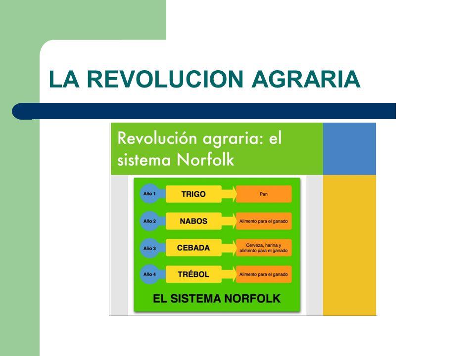 LA REVOLUCION AGRARIA