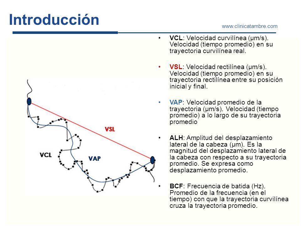 Introducción www.clinicatambre.com VCL: Velocidad curvilínea (µm/s). Velocidad (tiempo promedio) en su trayectoria curvilínea real. VSL: Velocidad rec
