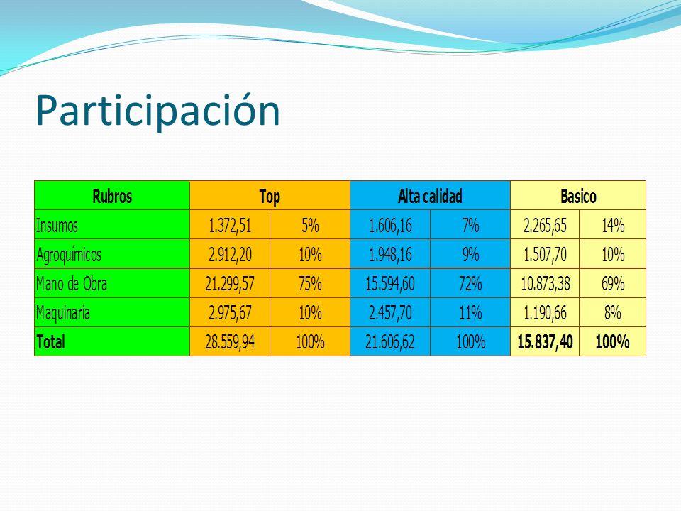 Pesos por hectárea Rendimiento (qq/ha) Amortización Estructura – Act.