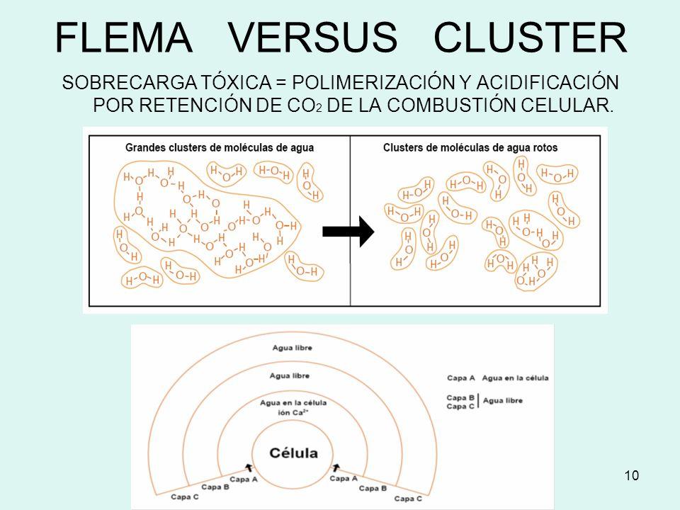 10 FLEMA VERSUS CLUSTER SOBRECARGA TÓXICA = POLIMERIZACIÓN Y ACIDIFICACIÓN POR RETENCIÓN DE CO 2 DE LA COMBUSTIÓN CELULAR.