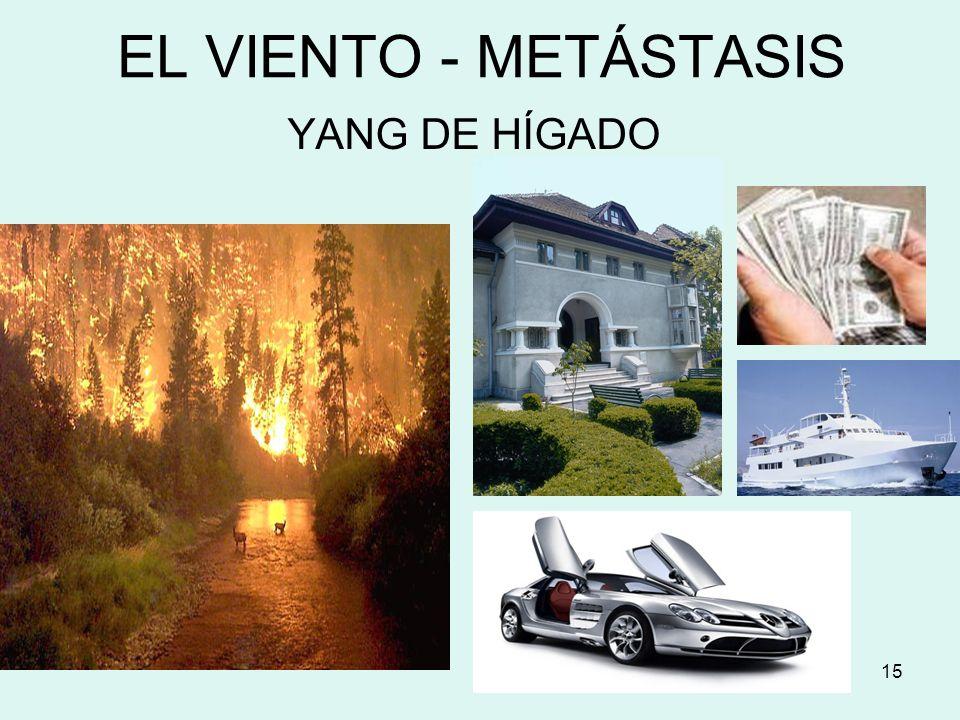 15 EL VIENTO - METÁSTASIS YANG DE HÍGADO