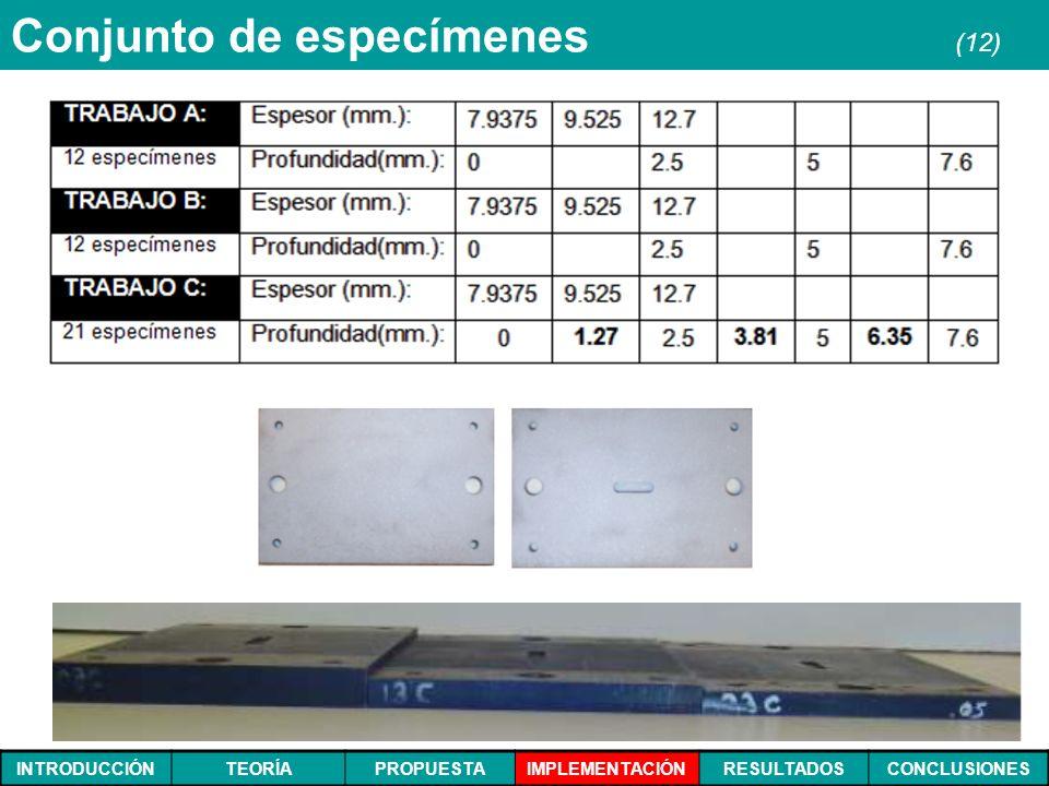 INTRODUCCIÓNTEORÍAPROPUESTAIMPLEMENTACIÓNRESULTADOSCONCLUSIONES Conjunto de especímenes (12)