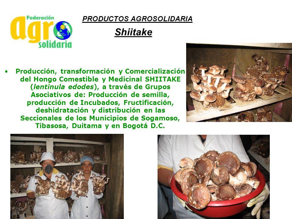 Shiitake Producción, transformación y Comercialización del Hongo Comestible y Medicinal SHIITAKE (lentinula edodes), a través de Grupos Asociativos de